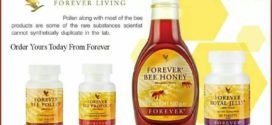 BEE HIVES PRODUCTS